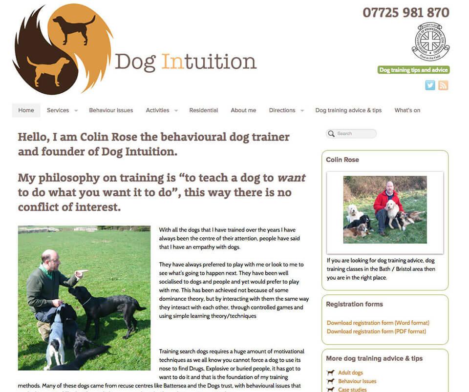 Web design portfolio - Dog Training website design