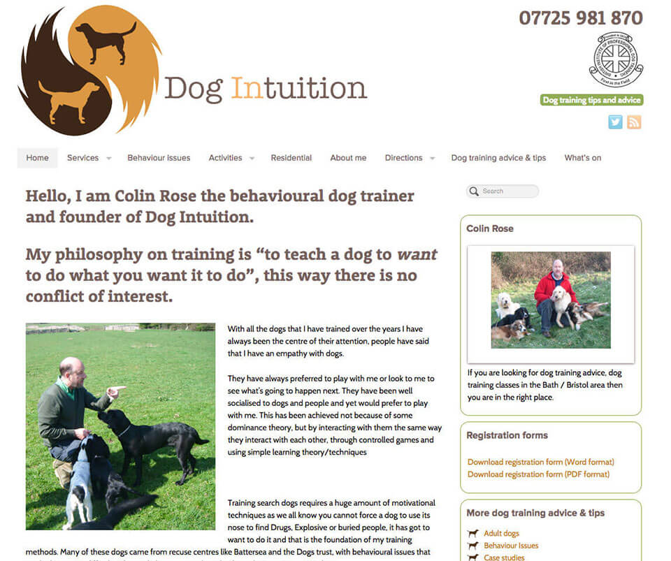 Web design portfolio - Dog Training website design