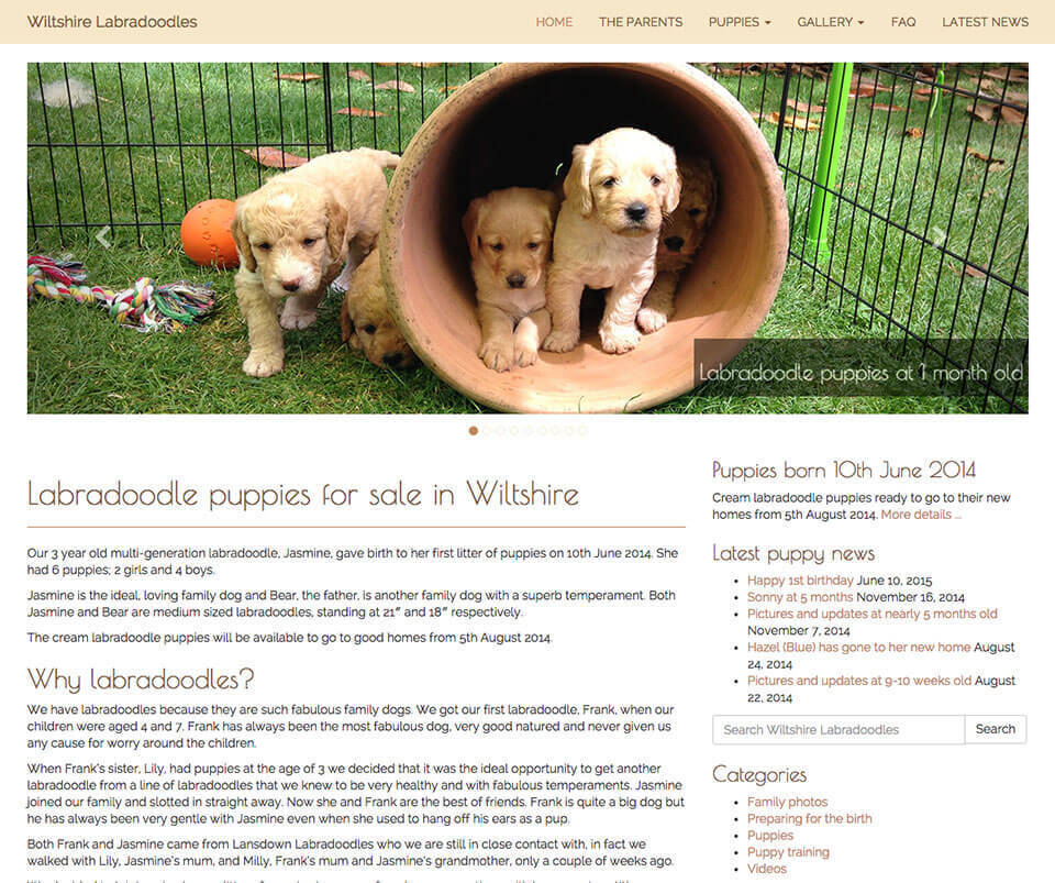 Web design portfolio - Dog breeder website design